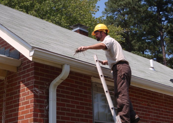 Roofing, Siding, Windows Installation, Lawn Care, Snow Removal, Garage Door Repair, Clean Gutters